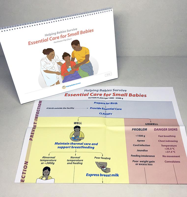 essential care for small babies  ecsb  facilitator flip
